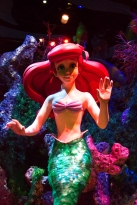 Under the Sea - Journey of the Little Mermaid