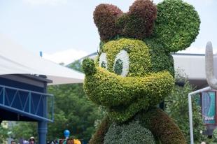 Minnie topiary